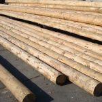 Деревянные сваи под фундамент
