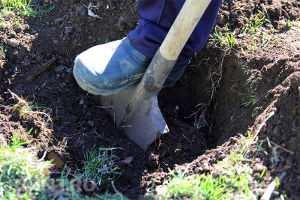 Земляные работы для столбчатого фундамента
