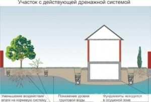 Снижение уровня грунтовых вод с помощью дренажной системы